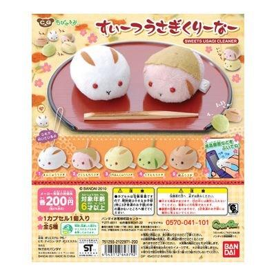 sweet-usagi-cleaner04