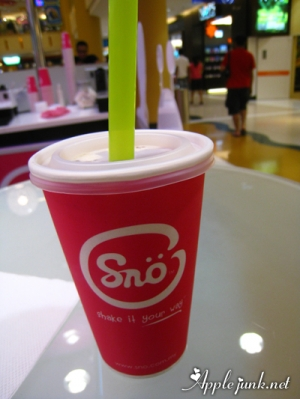 sno04