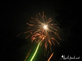 cny_2011_01