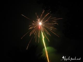 cny_2011_02